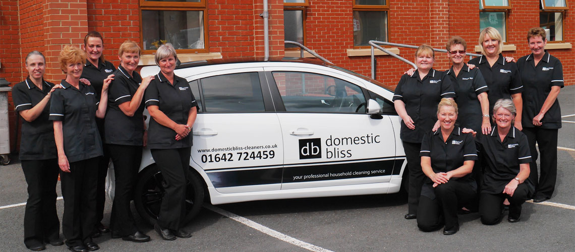 Domestic Bliss, Stokesley, Great Ayton, Cleaning company